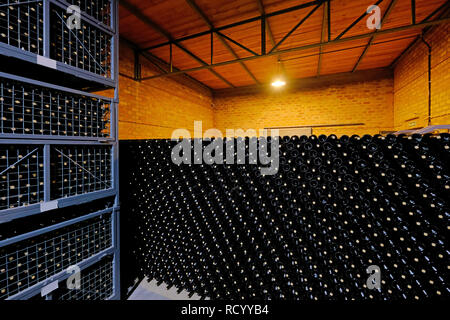 Resting wine bottles stacked in the cellar of a Malbec winery factory, San Juan, Argentina, also seen in Mendoza - Stock Photo