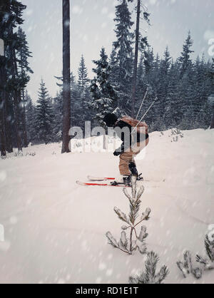 Skier skiing downhill during snowy day in high mountains between fir forest trees. Fast freeride winter sport. - Stock Photo