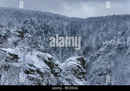 a picturesque scenery of Roßtrappe crag with the bare forest trees covered in snow in the Harz mountains on a cloudy winter day - Stock Photo