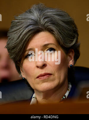 Washington, United States Of America. 15th Jan, 2019. United States Senator Joni Ernst (Republican of Iowa) listens as William P. Barr testifies before the US Senate Committee on the Judiciary on his nomination to be Attorney General of the US on Capitol Hill in Washington, DC on Tuesday, January 15, 2019. Credit: Ron Sachs/CNP (RESTRICTION: NO New York or New Jersey Newspapers or newspapers within a 75 mile radius of New York City) | usage worldwide Credit: dpa/Alamy Live News - Stock Photo