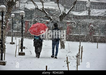 Residents walk through a snow covered park during heavy snowfall in Srinagar, Indian administered Kashmir.  Fresh snowfall began in Kashmir valley, breaking the intense cold wave conditions.  The weather man has already predicted heavy snowfall for at least five days starting from January 19. - Stock Photo