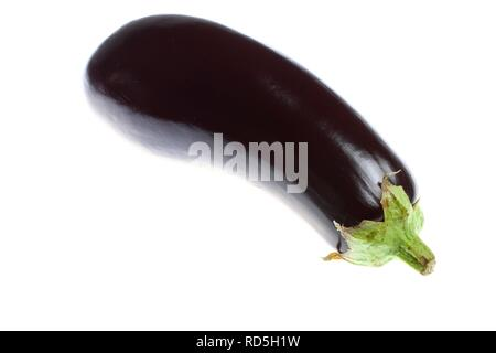 Eggplant (Solanum melongena) - Stock Photo