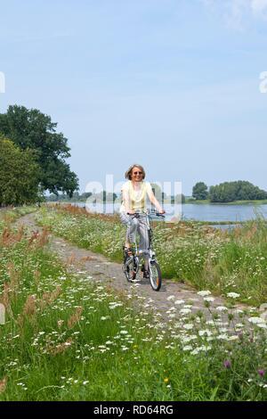 Cyclist on the dike at Wussegel near Hitzacker, Naturpark Elbufer-Drawehn nature reserve, Lower Saxony, Germany - Stock Photo
