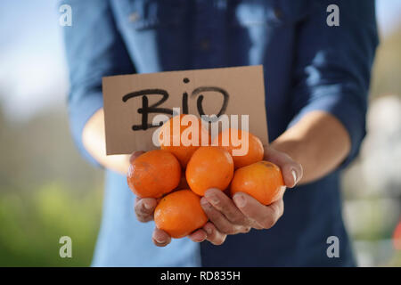 Close up of local farmer holding organic oranges and clementines in crate with organic sign - Stock Photo