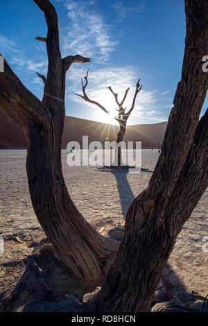 Sun rising over dunes at Deadvlei in Namib-Naukluft National Park, Namibia, Africa - Stock Photo