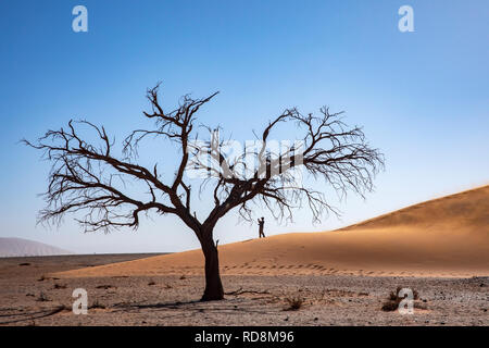 Person taking pictues on Dune 45 in Namib-Naukluft National Park, Namibia, Africa - Stock Photo
