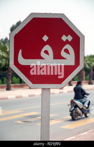 Man on a moped and stop sign with Arabic writing, Marrakech, Morocco, Afice - Stock Photo