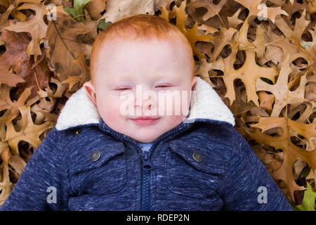 Close up Red headed little boy lying down in leaves outside - Stock Photo