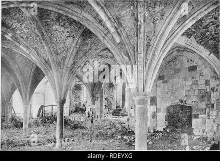 """. The Victoria history of the county of Surrey. Natural history. '""""J miry a I I -^is t - Waverley Abbey: View of the Ruins in 1737.. Waverley Abbey : Sub-vault of Cellarium.. Please note that these images are extracted from scanned page images that may have been digitally enhanced for readability - coloration and appearance of these illustrations may not perfectly resemble the original work.. Malden, Henry Elliot, ed. Westminster [A. Constable] - Stock Photo"""