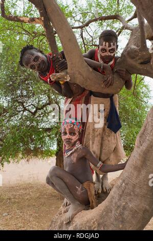 Three Karo children with facial paintings in a tree, Omo river valley, Southern Ethiopia, Africa - Stock Photo