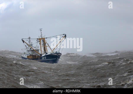The Netherlands, IJmuiden, Fishing boat in rough weather, storm. - Stock Photo