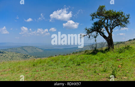 Akagera National Park, Parc National de l'Akagera, Eastern Province, Rwanda is a recovering conservation area managed by African Parks. - Stock Photo