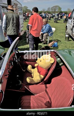 Teddy in a vintage Austin Healey Mk1 'Frogeye' Sprite sports car with its owners at the Anglesey Vintage Rally, Anglesey, North Wales, UK, May 2010 - Stock Photo