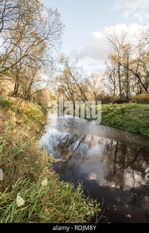 Stonavka river with trees and clouds mirroring near its junction with Olse river in Karvina city in Czech republic during nice autumn day with blue sk - Stock Photo