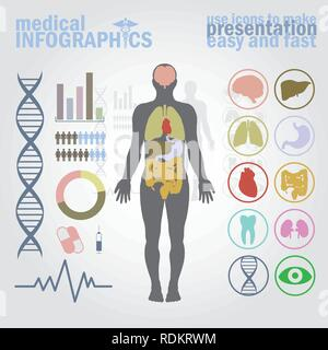 Medical infographics. Presentation set. Human body with internal organs plus buttons. Diagram (graph), cardio gram. - Stock Photo
