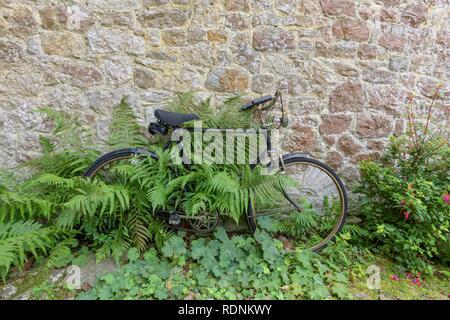 Bicycle and fern, moated castle Ightham Mote, Tonbridge and Malling, England, United Kingdom - Stock Photo
