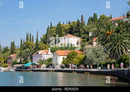 Village on Kolocep Island near Dubrovnik, Elaphiti or Elafiti islands, Southern Dalmatia, Adriatic Coast, Croatia, Europe