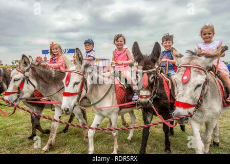 Happy children on donkey rides. - Stock Photo