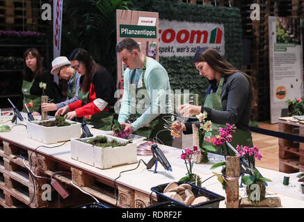 Berlin, Germany. 18th Jan, 2019. Visitors try gardening during the International Green Week (IGW) Berlin in Berlin, capital of Germany, on Jan. 18, 2019. The IGW Berlin, an international exhibition of the food, agriculture and gardening industries, opened on Friday and will last until Jan. 27, attracting more than 1,700 exhibitors from all over the world. Credit: Shan Yuqi/Xinhua/Alamy Live News - Stock Photo