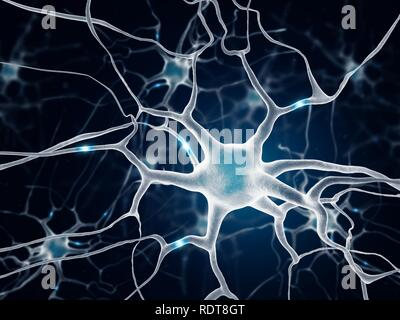 Neurons in the brain - Stock Photo