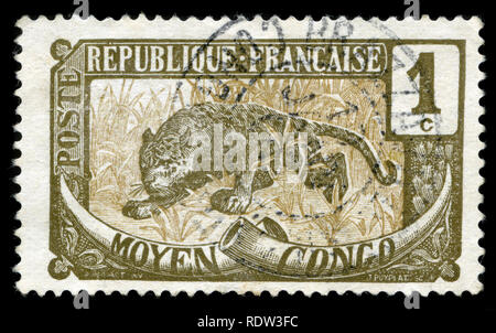 Postage stamp from French Congo issued in 1907 - Stock Photo