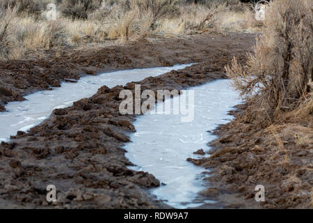 A icy dirt road in the high desert of Nevada, USA - Stock Photo