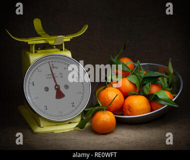 Oranges, tangerines on scales on rustic hessian. Dark, chiaroscuro style still life. Vintage theme. - Stock Photo