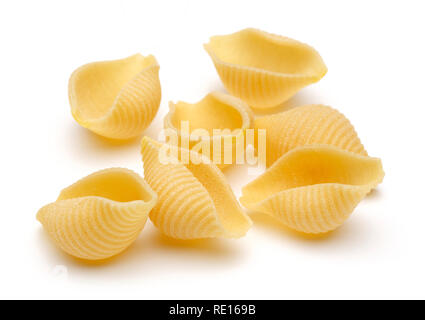 Conchiglie rigate pasta isolated on white background - Stock Photo