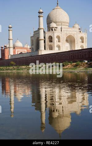 Taj Mahal reflecting in the Yamuna river, UNESCO World Heritage Site, Agra, Uttar Pradesh, India, Asia - Stock Photo