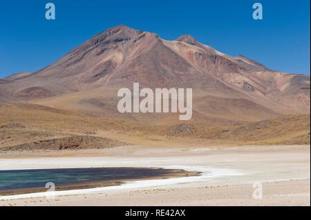 Laguna Miscanti and Miniques volcano, Atacama salt flat, Atacama Desert, Chile, South America - Stock Photo