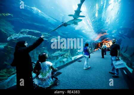 Dubai Aquarium and Underwater Zoo at the Dubai Mall, Dubai, United Arab Emirates, Middle East - Stock Photo