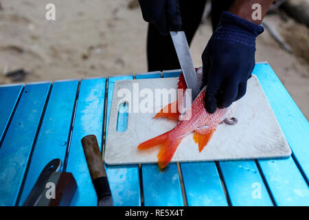 Japanese fisherman preparing freshly caught fish for dinner with a knife on tropical beach, Iriomote, Japan - Stock Photo