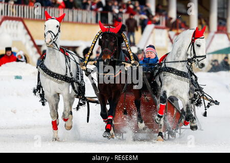 Moscow, Russia. 20th Jan, 2019. MOSCOW, RUSSIA - JANUARY 20, 2019: A contestant during the Russian Troika races at the he Central Moscow Hippodrome. Sergei Karpukhin/TASS Credit: ITAR-TASS News Agency/Alamy Live News - Stock Photo