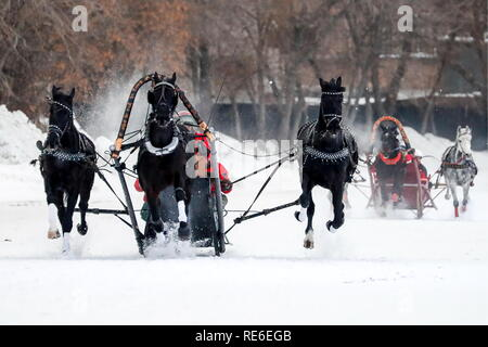 Moscow, Russia. 20th Jan, 2019. MOSCOW, RUSSIA - JANUARY 20, 2019: Contestants during the Russian Troika races at the he Central Moscow Hippodrome. Sergei Karpukhin/TASS Credit: ITAR-TASS News Agency/Alamy Live News - Stock Photo