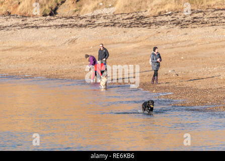 Wareham, UK. Sunday 20th January 2019. Visitors enjoy the winter sun at Worbarrow Beach on the Jurassic Coast in Dorset. People are wrapped up warm in the 4 degree cold but sunny weather. Credit: Thomas Faull/Alamy Live News - Stock Photo