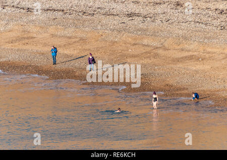 Wareham, UK. Sunday 20th January 2019. Two brave souls go for a swim off Worbarrow Beach on the Jurassic Coast in 4 degree cold but sunny weather. Other people are wrapped up in warm coats. Credit: Thomas Faull/Alamy Live News - Stock Photo