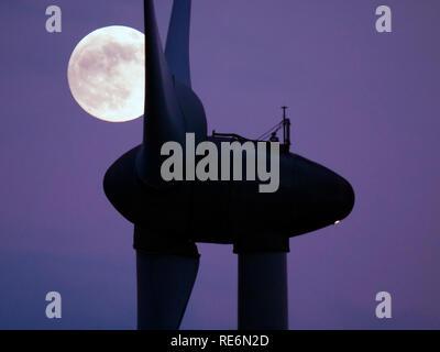 Peak District, UK. 20th Jan, 2019. Full Blood Wolf Super Moon rising over wind turbines at Griffe Grange near Wirksworth, Derbyshire Dales, Peak District, UK Credit: Doug Blane/Alamy Live News - Stock Photo