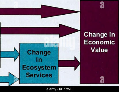 . The Cost of Policy Inaction: The case of not meeting the 2010 biodiversity target. jx Change in Biodiversity Change in Ecosystem functions. Figure 6.1 Chapter 6 in the conceptual model of the COPI analysis In addition to the focus on land use changes, the COPI team also reviewed the relevant literature on other key areas of biodiversity loss and ecosystem sendees losses • Species - Invasive aliens species (IAS). • Marine (in particular: ocean fisheries) • Coastal (coral reefs, mangroves and wetlands23) The COPI insights on these issues are also presented here. Except for the marine ecosystem - Stock Photo