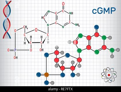 Cyclic guanosine monophosphate (cGMP)  molecule. Sheet of paper in a cage. Structural chemical formula and molecule model. Vector illustration - Stock Photo