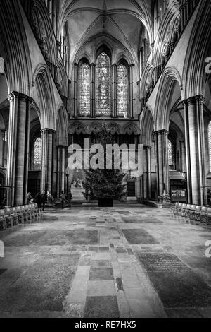 Black and white image of part of Salisbury Cathedral and Christmas tree with stained glass window above - Stock Photo