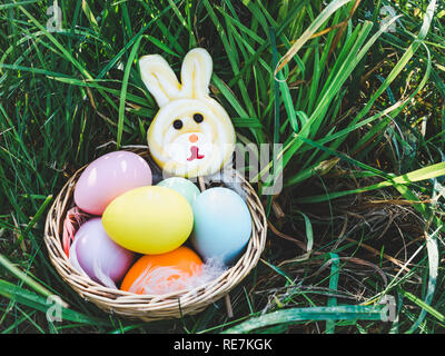 Basket with colorful Easter eggs and a rabbit-shaped lollipop standing on the green grass against the bright rays of the spring sun. Happy Easter. Pre - Stock Photo