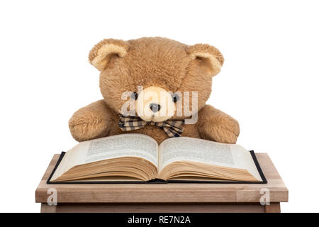 teddy bear reading book isolated on white background - Stock Photo