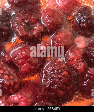 Close up of fresh raspberries in a cocktail - Stock Photo
