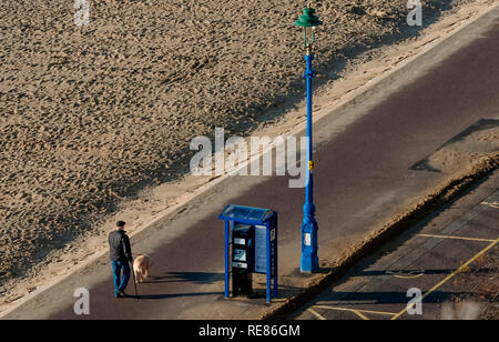 Senior man takes his dog for a walk along the sandy beach on a beautiful sunny day - Stock Photo