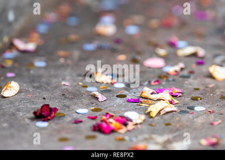 Macro low angle surface level closeup view of dried flowers petals after wedding ceremony party on street sidewalk road pavement with multicolor color - Stock Photo