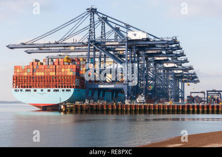 view of massive maersk container ship unloading containers freight at felixstowe port suffolk - Stock Photo