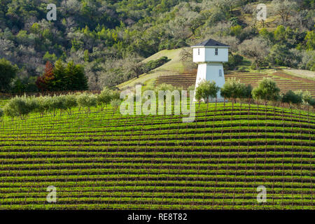 Water and Wine - Water tower above vineyard rows. Geyserville, California USA - Stock Photo