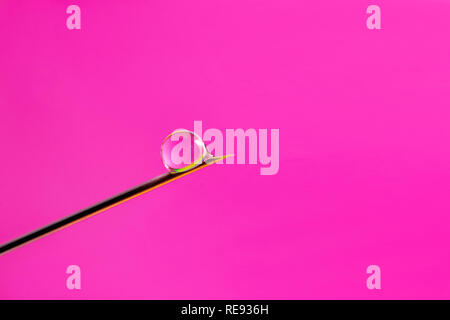 A drop of Botox injection solution flows down the needle tip of a disposable syringe. A droplet of liquid medicine on the end of the needle a pink bac - Stock Photo