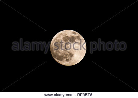 The Wolf moon rises over Fleet, Hampshire UK, later tonight there will be a total eclipse as the Earth passes between the Sun and the Moon. The eclips - Stock Photo