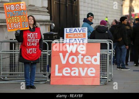 London, UK. 21st January 2019 -A Pro-Brexit demonstrator protest outside Downing Street. Later today British Prime Minister Theresa May will make a statement in the House of Commons on an alternative Brexit Deal.    Credit: Dinendra Haria/Alamy Live News - Stock Photo